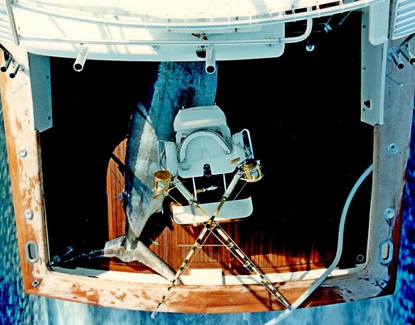 14) HEAVY LOAD 1298 lbs. 1992.jpg