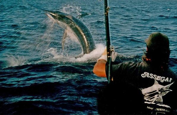 26) ASSEGAI - BIG FISH THROWING THE HOOK