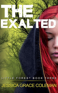 The Exalted: A Little Forest Paranormal Mystery Book Three