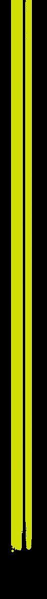 bande-2.png