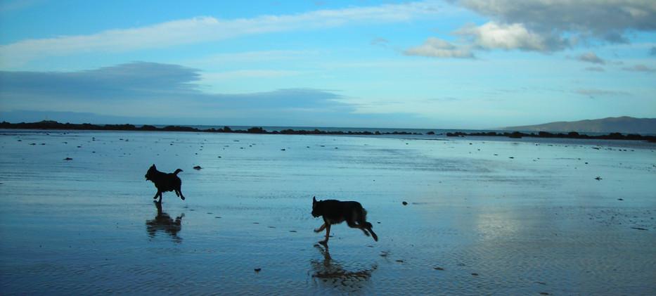 Hawley Beach