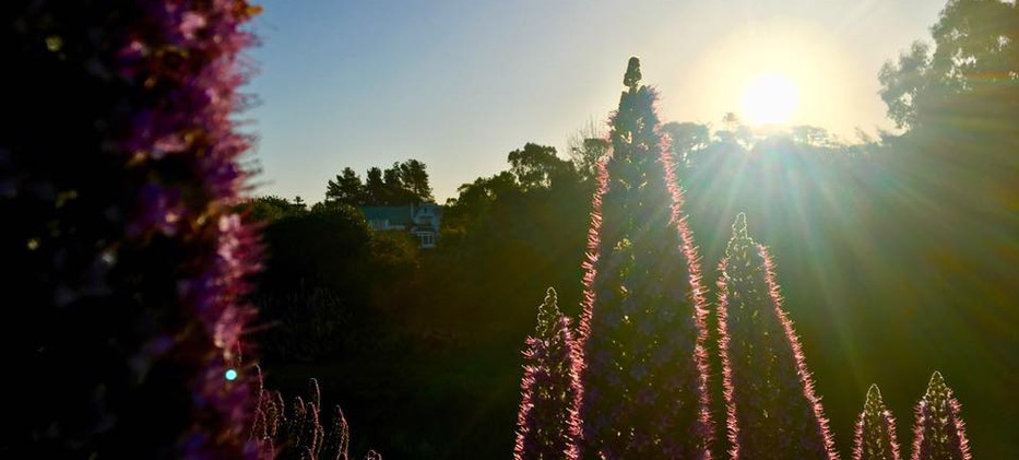 Sunset at Hawley