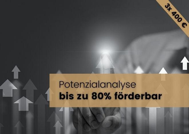 Essentio_Förderung_Potenzialanalyse.jpg