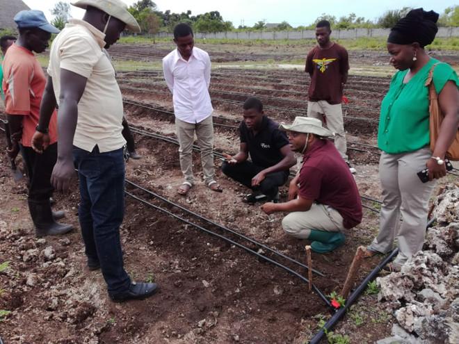 Istalling Irrigation system
