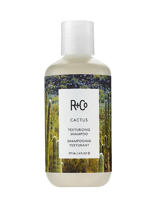 Cactus Shampoo