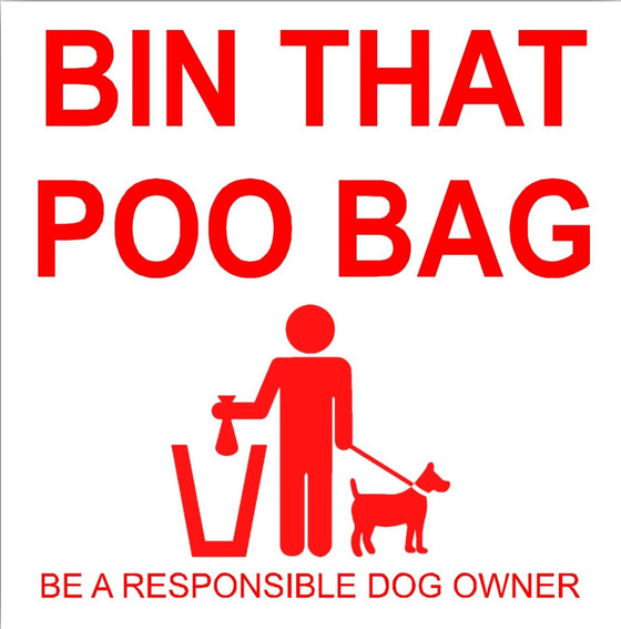 Responsible and enjoyable dog walking in Dunbar