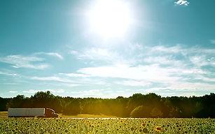 Summer-Rec.jpg