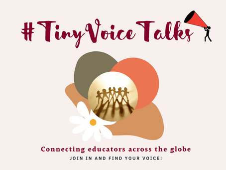 #TinyVoiceTalks - the Community