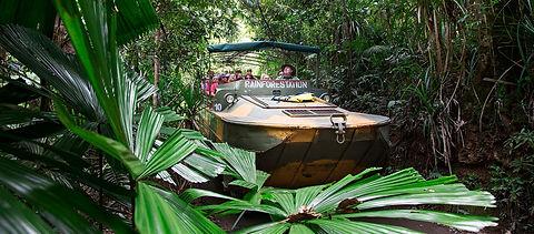 army-duck-rainforest-tour-rainforestation-nature-park.jpg