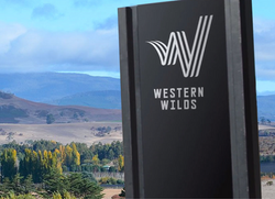 Western Wilds Strategy and Plan