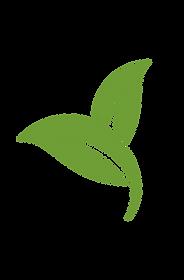 metodología_icono2-07.png