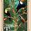 Thumbnail: Cartão postal