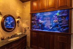 Custom 650 Gallon Aquarium
