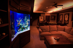 Jumbo Aquarium Side View