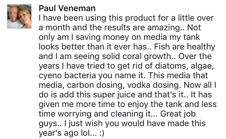 Vibrant review