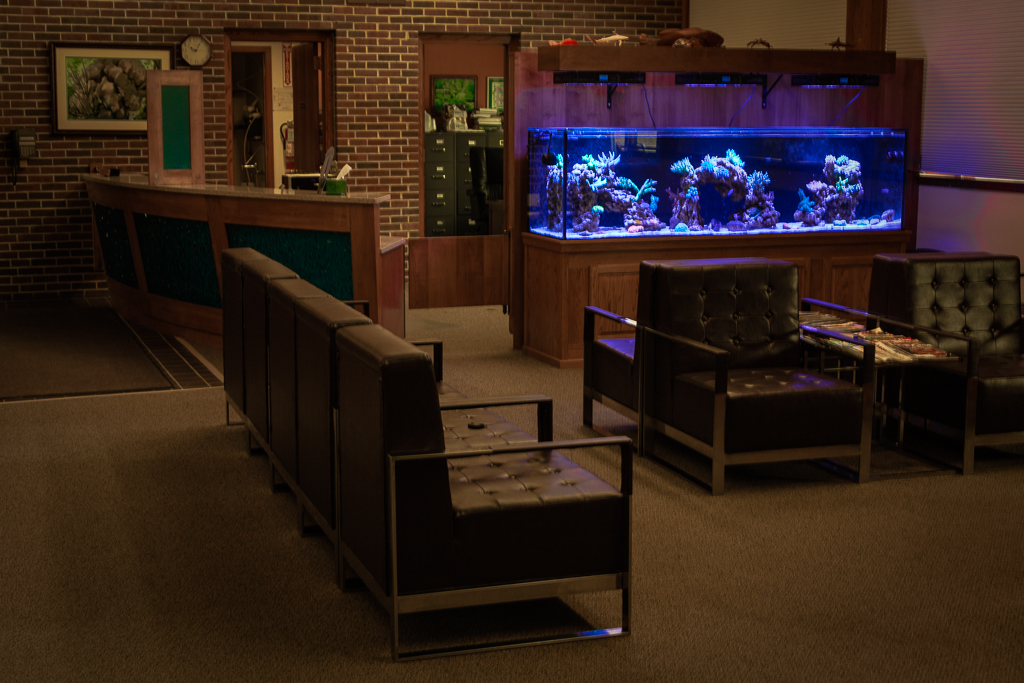 Custom Reef Aquarium Waiting Room