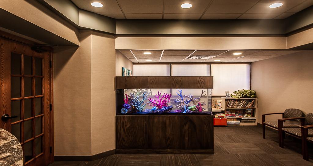 Custom Decorative Saltwater Aquarium