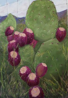 Margaret O'Donnell, pastels