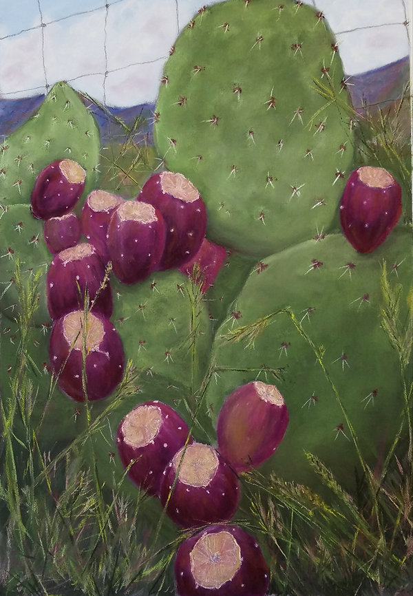 prickly pear cactus with red tuna and wire fence painting margaret odonnell art