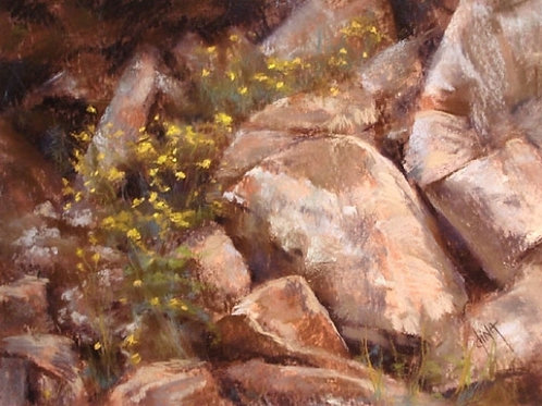 yellow wildflowers in rocks landscape painting by Dina Gregory