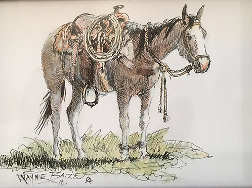 hobbled roan horse pen and ink drawing