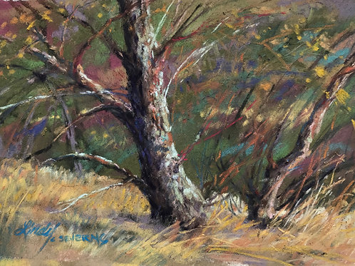 mossy tree trunk miniature pastel landscape painting by Lindy Cook Severns