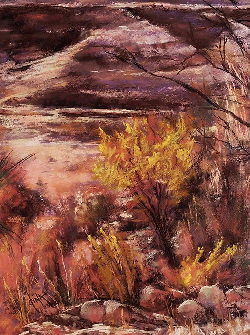autumn color in the desert landscape painting by Dina Gregory