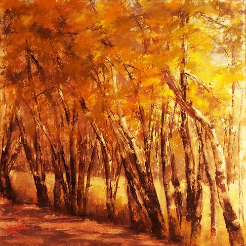 golden grove of aspen pastel landscape painting by Dina Gregory