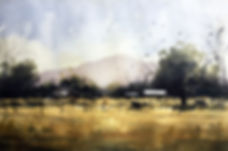 cattle grazing yellow pasture beneath mountain original watercolor tim oliver art