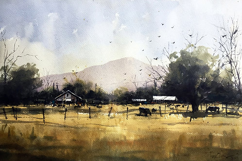 cattle graze golden grass beneath Texas mountains watercolor landscape by Tim Oliver
