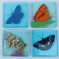 Endangered UK Butterflies