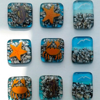 Pebble sealife fridge magnets