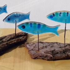 Fish shoals (small)