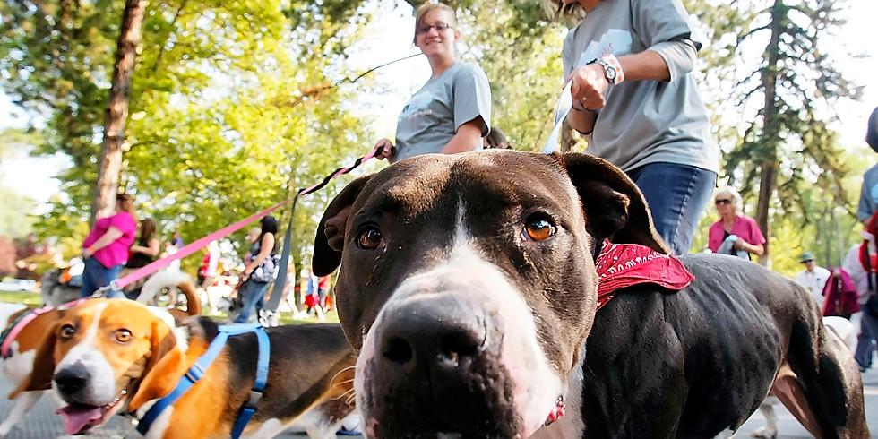 Bangor Humane Society Paws on Parade
