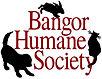 Bangor Humane Society.jpg