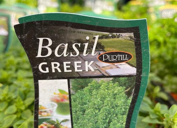 Basil - Greek