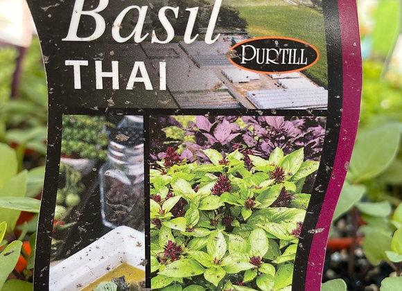 Basil - Thai