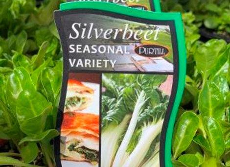Silverbeet - Seasonal Variety punnet