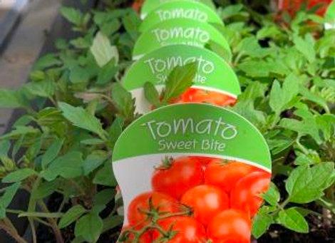 Tomato - Sweet Bite punnet