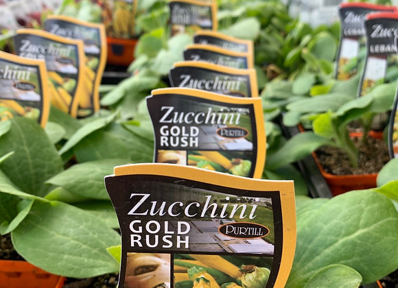 Zucchini Gold Rush punnet