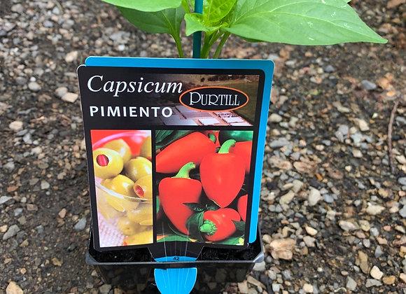 Capsicum - Pimiento ADVANCED