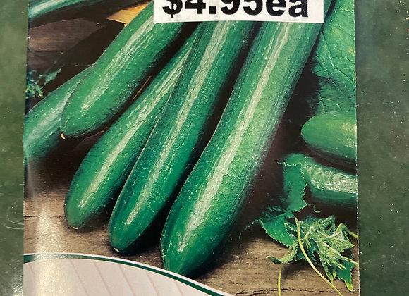 Seeds - Cucumber Climbing Burpless Hybrid