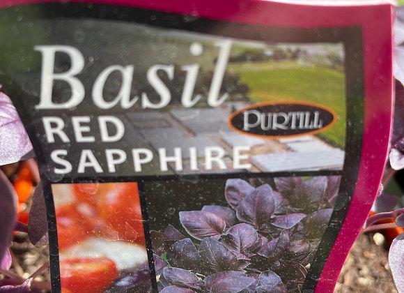 Basil - Red Sapphire punnet