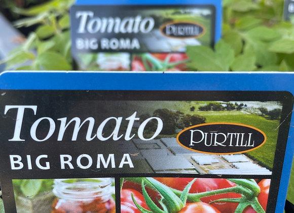Tomato - Big Roma punnet