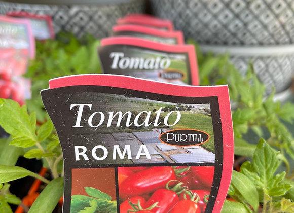Tomato - Roma punnet