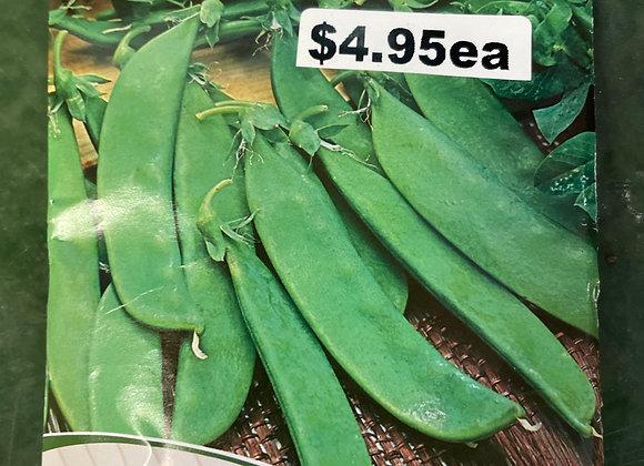 Seeds - Snow Pea Snowie Semi Bush