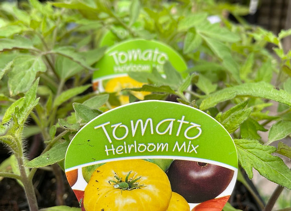 Tomato - Heirloom mix punnet