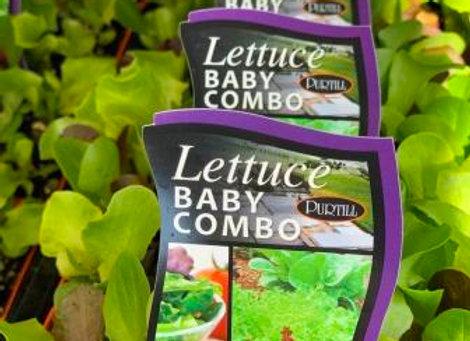 Lettuce - Baby Combo punnet