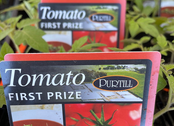 Tomato - First Prize punnet
