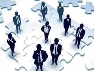 Board of Directors' Responsibilities -- Senior Management